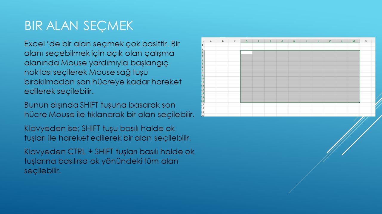 BIR ALAN SEÇMEK Excel 'de bir alan seçmek çok basittir.