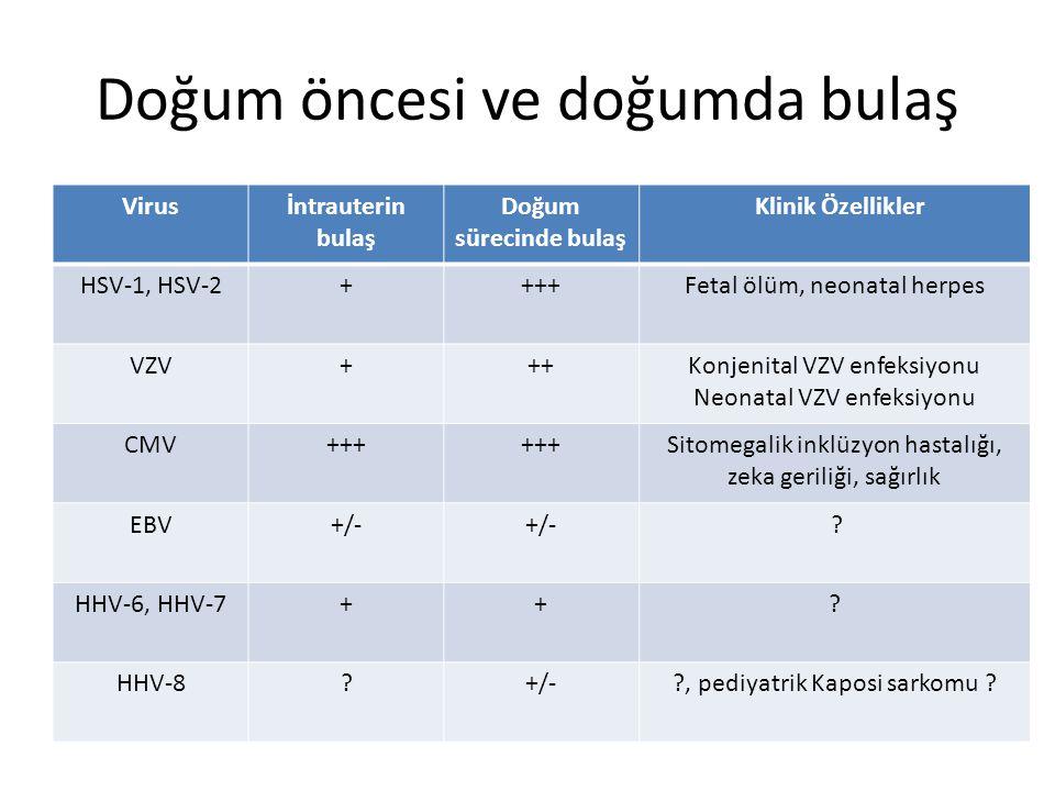 Doğum öncesi ve doğumda bulaş Virusİntrauterin bulaş Doğum sürecinde bulaş Klinik Özellikler HSV-1, HSV-2++++Fetal ölüm, neonatal herpes VZV+++Konjenital VZV enfeksiyonu Neonatal VZV enfeksiyonu CMV+++ Sitomegalik inklüzyon hastalığı, zeka geriliği, sağırlık EBV+/- .