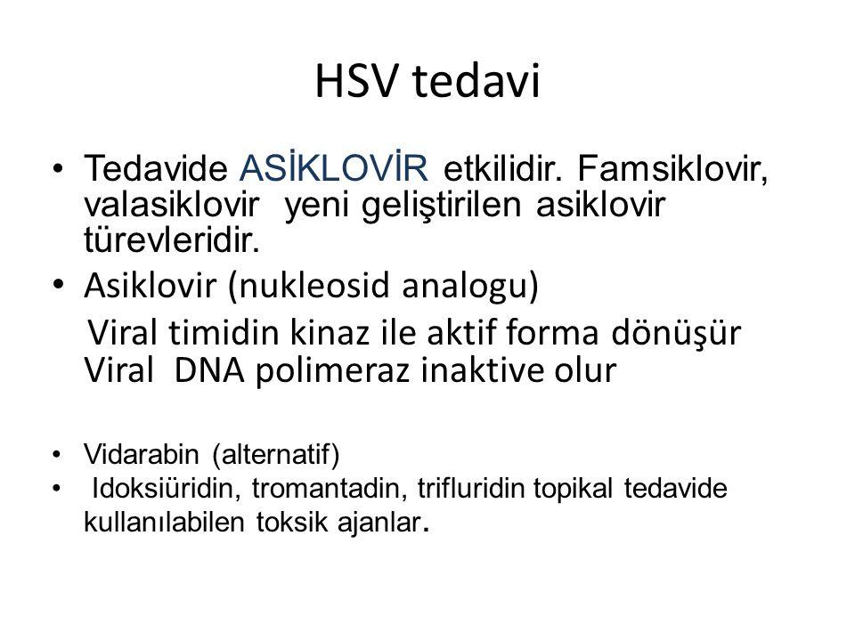 HSV tedavi •Tedavide ASİKLOVİR etkilidir.