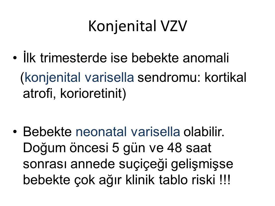 Konjenital VZV •İlk trimesterde ise bebekte anomali (konjenital varisella sendromu: kortikal atrofi, korioretinit) •Bebekte neonatal varisella olabilir.
