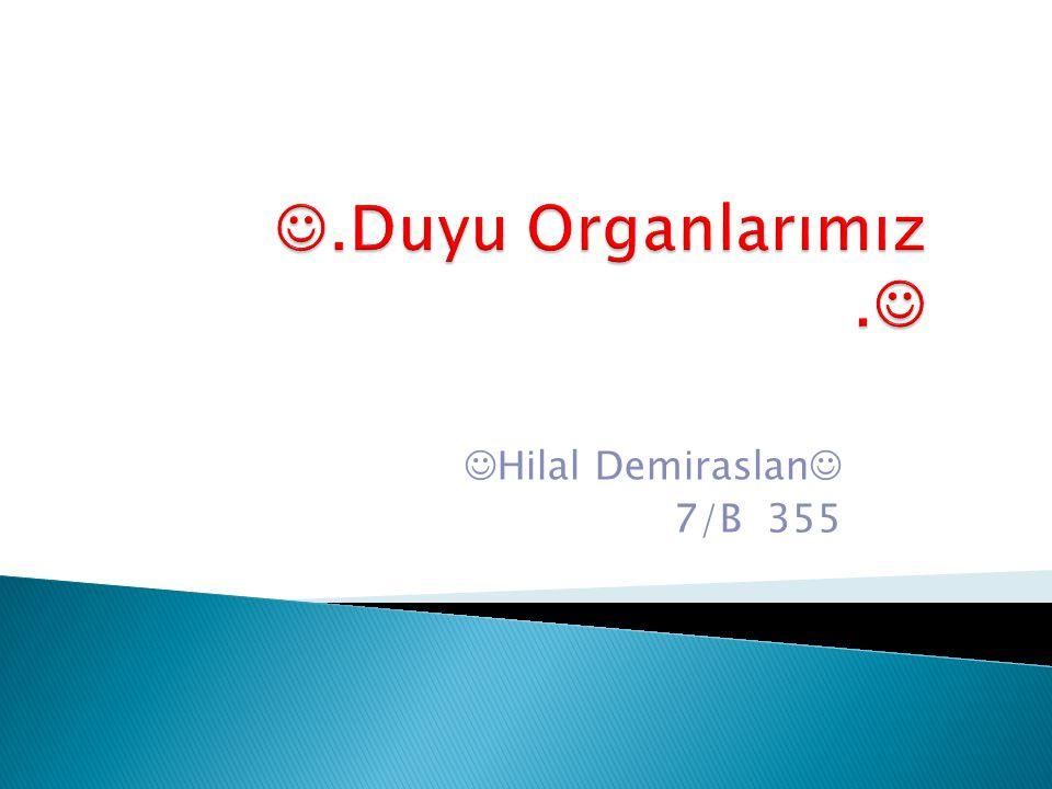 Hilal Demiraslan  7/B 355