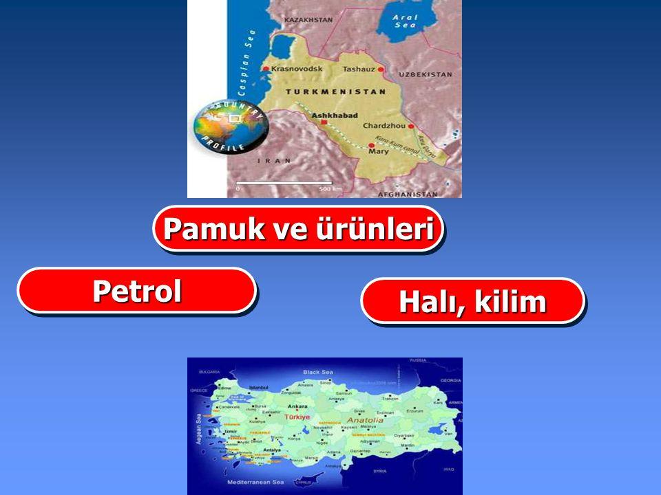 Halı, kilim PetrolPetrol Pamuk ve ürünleri