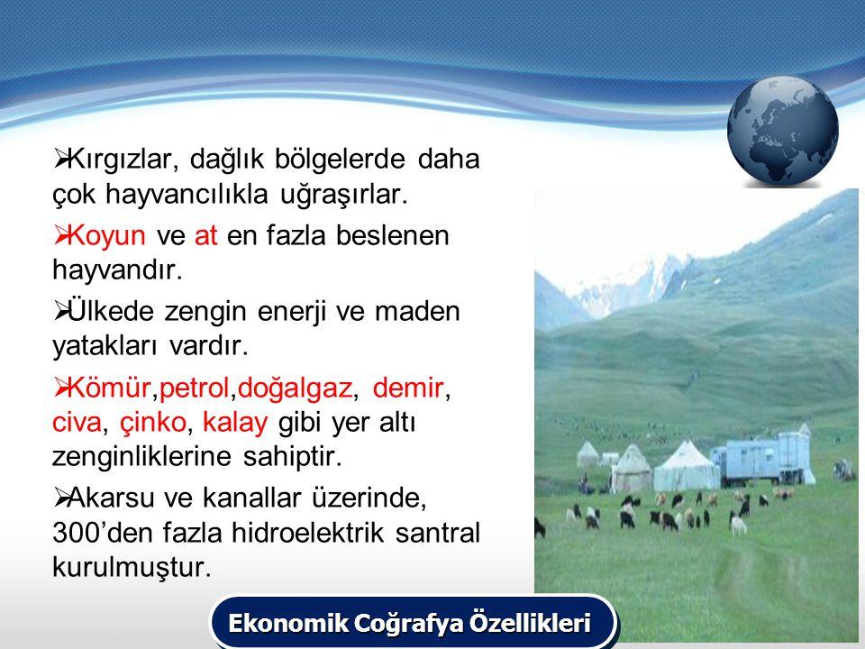  Kırgızlar, dağlık bölgelerde daha çok hayvancılıkla uğraşırlar.  Koyun ve at en fazla beslenen hayvandır.  Ülkede zengin enerji ve maden yatakları
