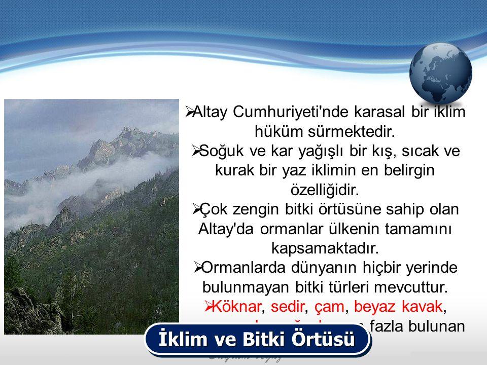  Altay Cumhuriyeti'nde karasal bir iklim hüküm sürmektedir.  Soğuk ve kar yağışlı bir kış, sıcak ve kurak bir yaz iklimin en belirgin özelliğidir. 