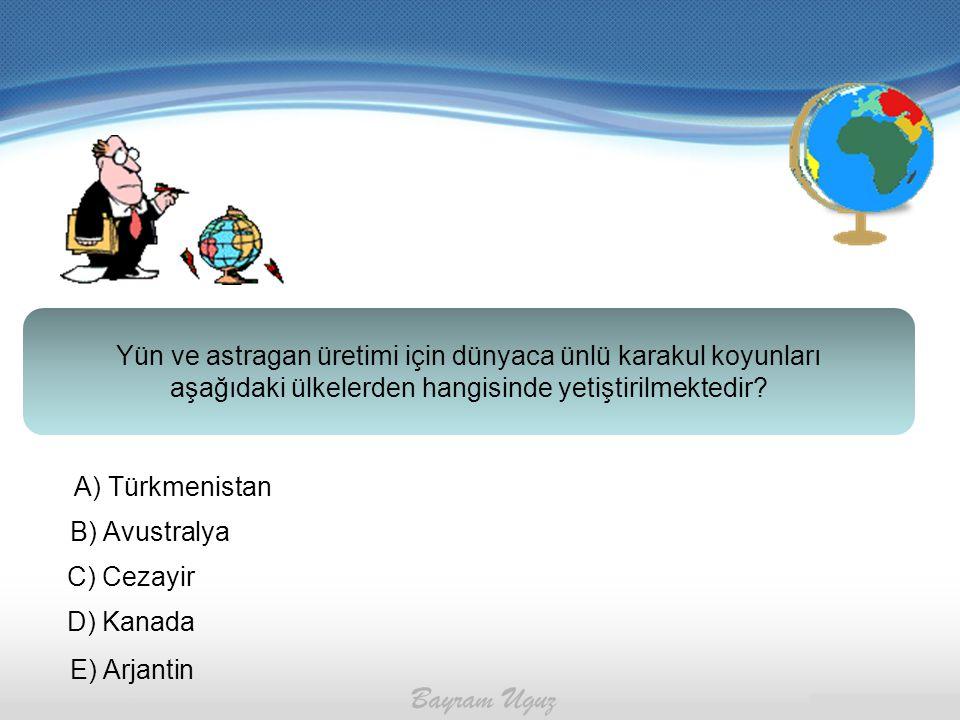 Yün ve astragan üretimi için dünyaca ünlü karakul koyunları aşağıdaki ülkelerden hangisinde yetiştirilmektedir? A) Türkmenistan B) Avustralya C) Cezay