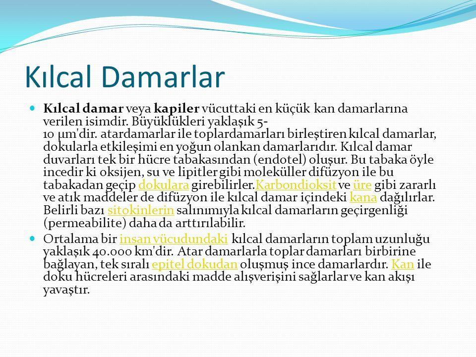 Kılcal Damarlar  Kılcal damar veya kapiler vücuttaki en küçük kan damarlarına verilen isimdir. Büyüklükleri yaklaşık 5- 10 μm'dir. atardamarlar ile t