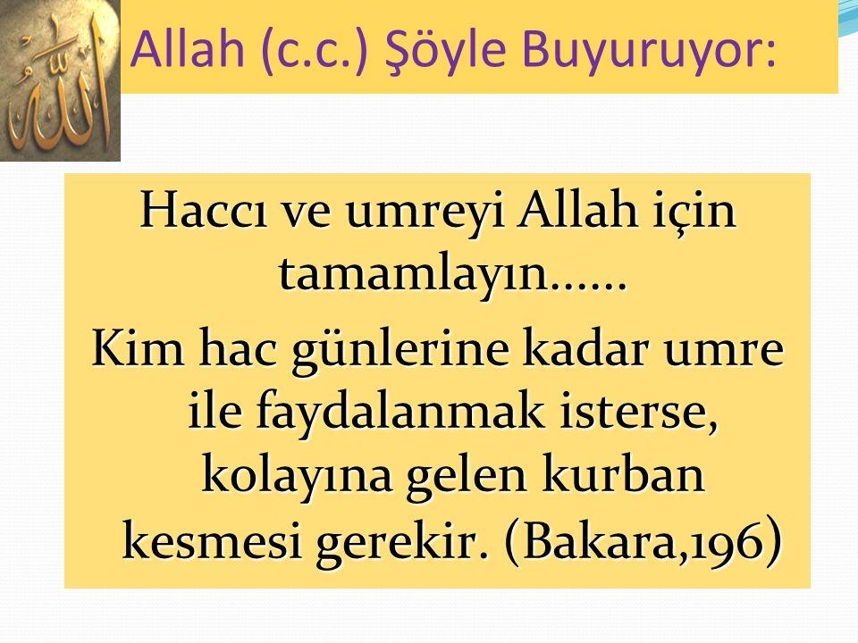 Haccı ve umreyi Allah için tamamlayın......