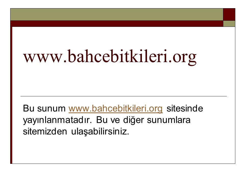 www.bahcebitkileri.org Bu sunum www.bahcebitkileri.org sitesinde yayınlanmatadır. Bu ve diğer sunumlara sitemizden ulaşabilirsiniz.www.bahcebitkileri.