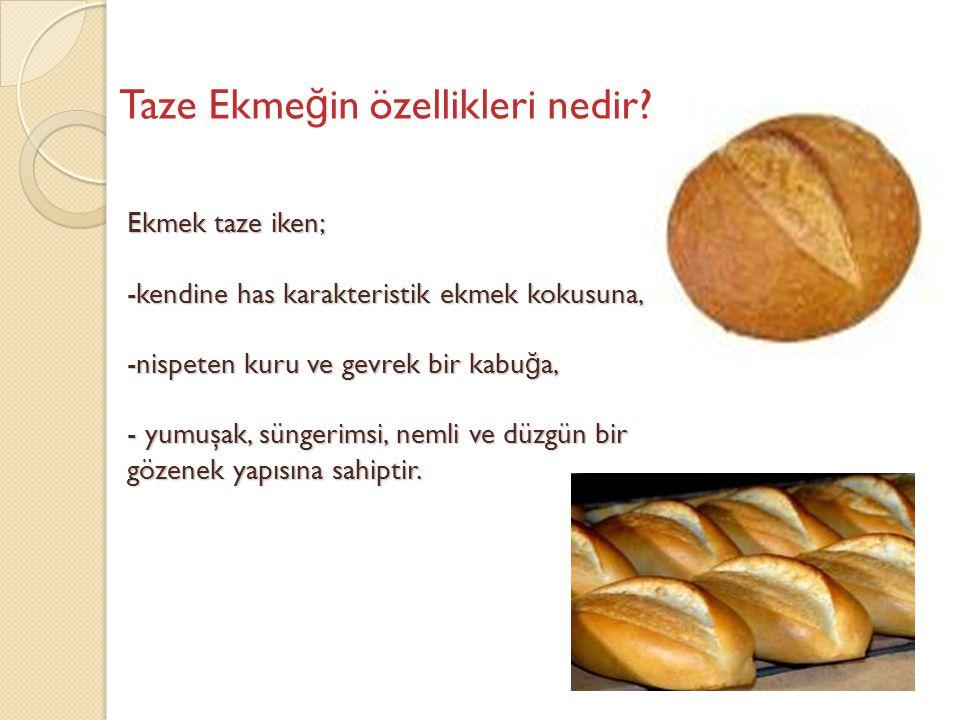 Ekmek taze iken; -kendine has karakteristik ekmek kokusuna, -nispeten kuru ve gevrek bir kabu ğ a, - yumuşak, süngerimsi, nemli ve düzgün bir gözenek