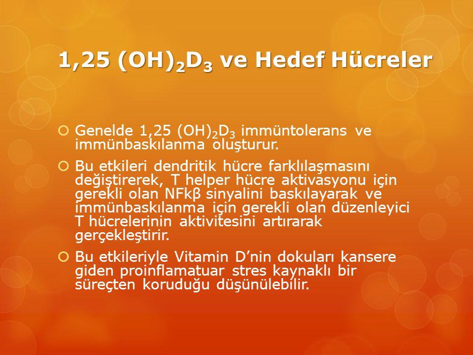 1,25 (OH) 2 D 3 ve Hedef Hücreler  Genelde 1,25 (OH) 2 D 3 immüntolerans ve immünbaskılanma oluşturur.