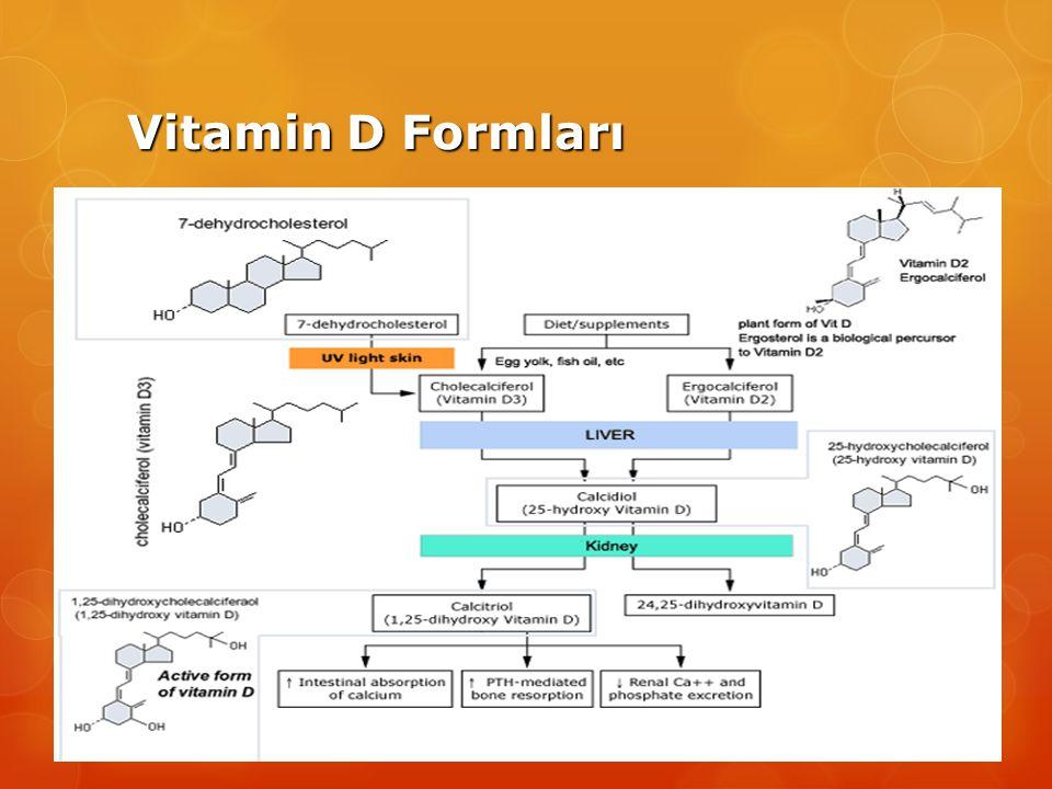 Vitamin D Formları