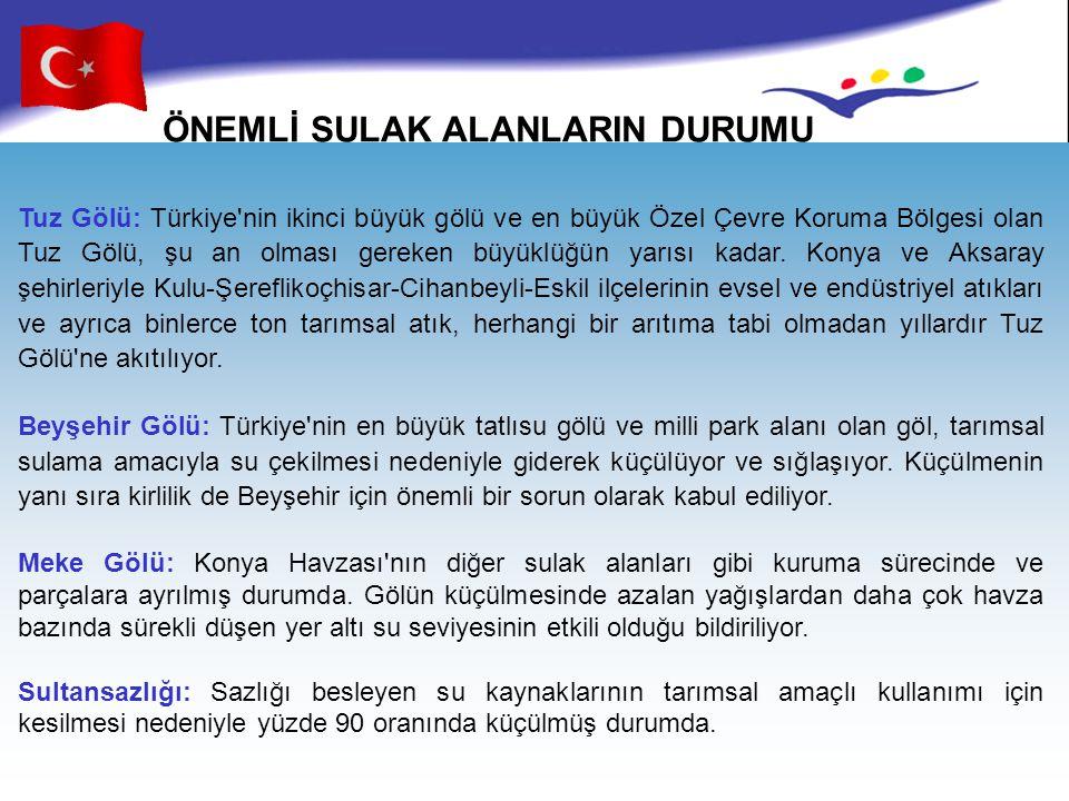ÖNEMLİ SULAK ALANLARIN DURUMU Tuz Gölü: Türkiye'nin ikinci büyük gölü ve en büyük Özel Çevre Koruma Bölgesi olan Tuz Gölü, şu an olması gereken büyükl