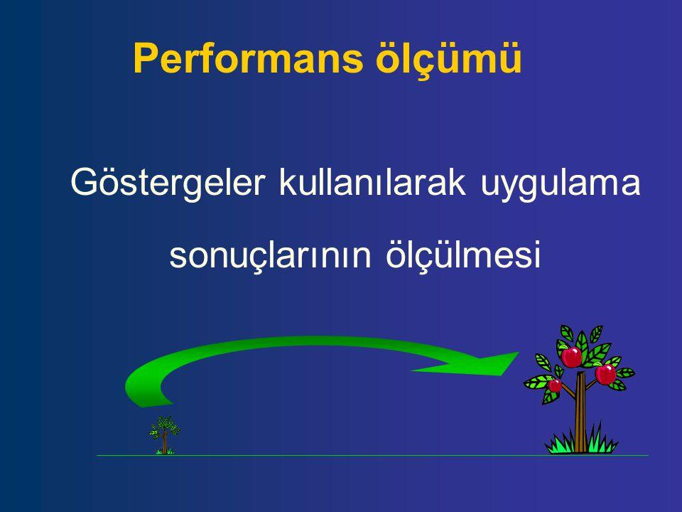 Performans ölçümü Göstergeler kullanılarak uygulama sonuçlarının ölçülmesi