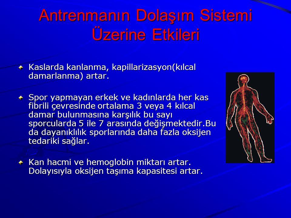 Kaslarda kanlanma, kapillarizasyon(kılcal damarlanma) artar.