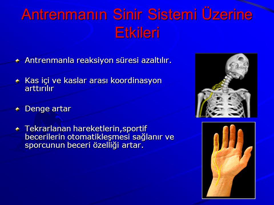Antrenmanın Sinir Sistemi Üzerine Etkileri Antrenmanla reaksiyon süresi azaltılır.