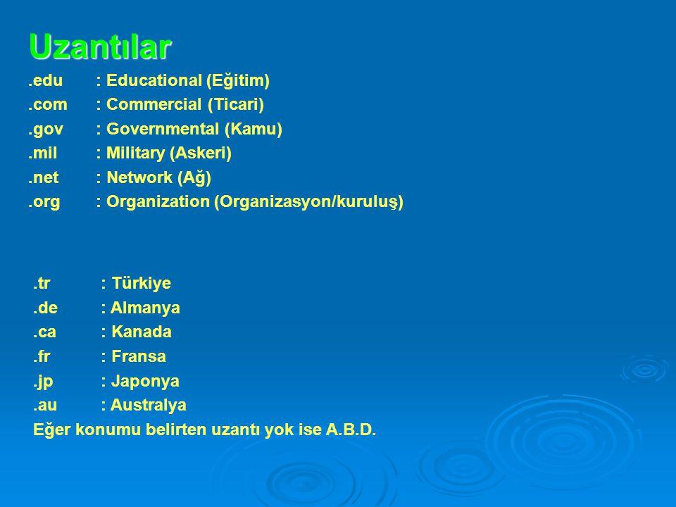 Uzantılar.edu : Educational (Eğitim).com : Commercial (Ticari).gov: Governmental (Kamu).mil: Military (Askeri).net: Network (Ağ).org: Organization (Or