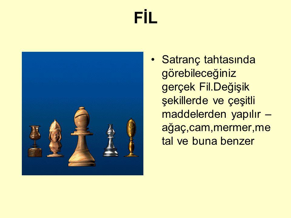 FİL FİL b