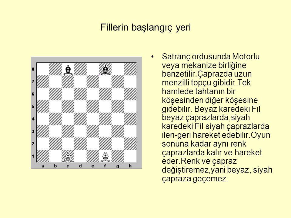 FİL •Satranç tahtasında görebileceğiniz gerçek Fil.Değişik şekillerde ve çeşitli maddelerden yapılır – ağaç,cam,mermer,me tal ve buna benzer