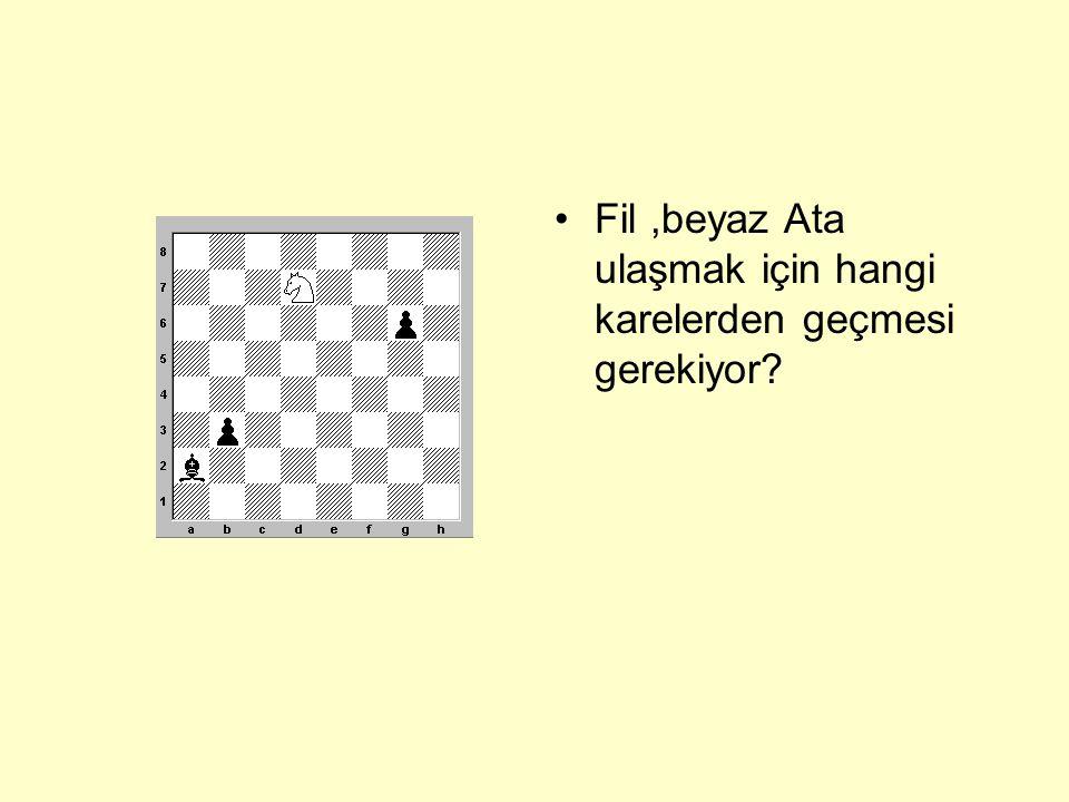 •Fil, a3 ve h2 karelerinde bulunan piyonlara ulaşabilmesi için hangi karelerden geçmesi gerekiyor?