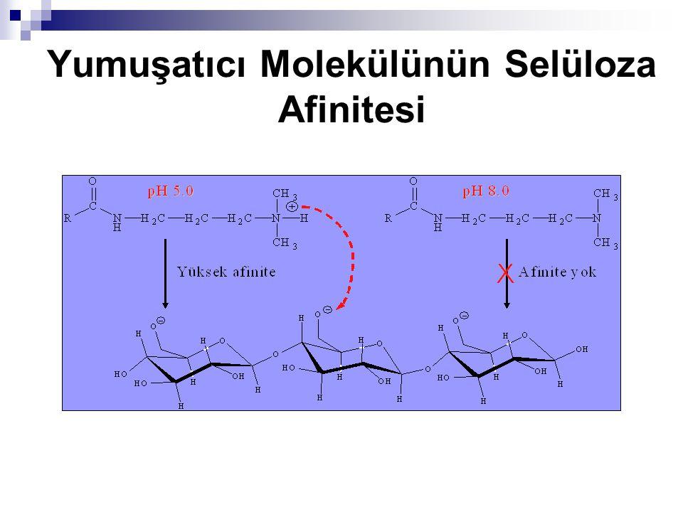 Yumuşatıcı Molekülünün Selüloza Afinitesi