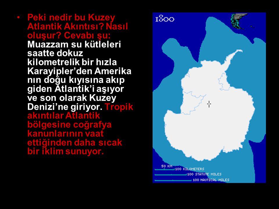 •Peki nedir bu Kuzey Atlantik Akıntısı? Nasıl oluşur? Cevabı şu: Muazzam su kütleleri saatte dokuz kilometrelik bir hızla Karayipler'den Amerika nın d