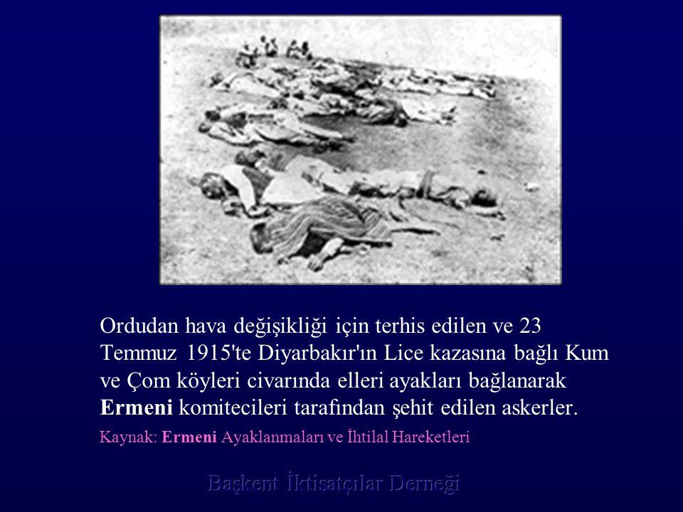 Ordudan hava değişikliği için terhis edilen ve 23 Temmuz 1915'te Diyarbakır'ın Lice kazasına bağlı Kum ve Çom köyleri civarında elleri ayakları bağlan