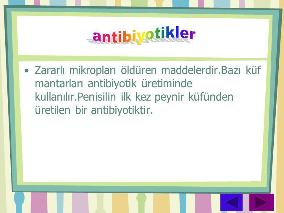 •Zararlı mikropları öldüren maddelerdir.Bazı küf mantarları antibiyotik üretiminde kullanılır.Penisilin ilk kez peynir küfünden üretilen bir antibiyot