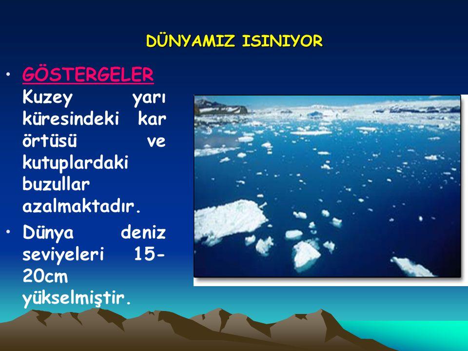 DÜNYAMIZ ISINIYOR •GÖSTERGELER Kuzey yarı küresindeki kar örtüsü ve kutuplardaki buzullar azalmaktadır. •Dünya deniz seviyeleri 15- 20cm yükselmiştir.