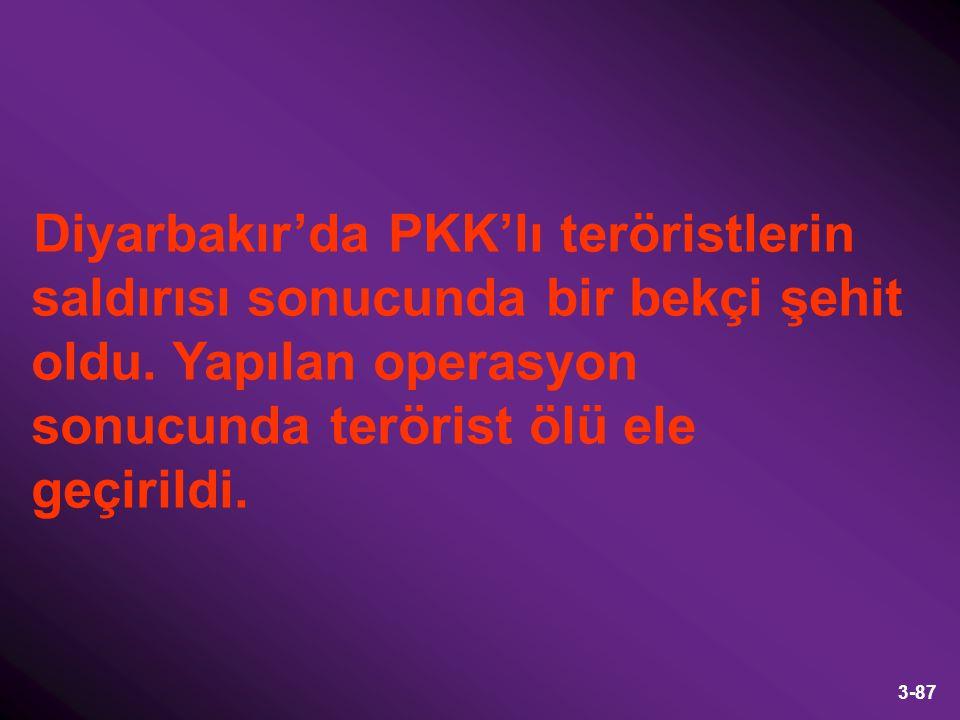 3-87 Diyarbakır'da PKK'lı teröristlerin saldırısı sonucunda bir bekçi şehit oldu. Yapılan operasyon sonucunda terörist ölü ele geçirildi.