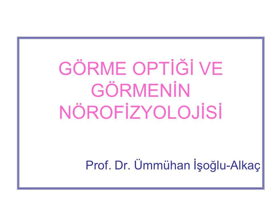 GÖRME OPTİĞİ VE GÖRMENİN NÖROFİZYOLOJİSİ Prof. Dr. Ümmühan İşoğlu-Alkaç