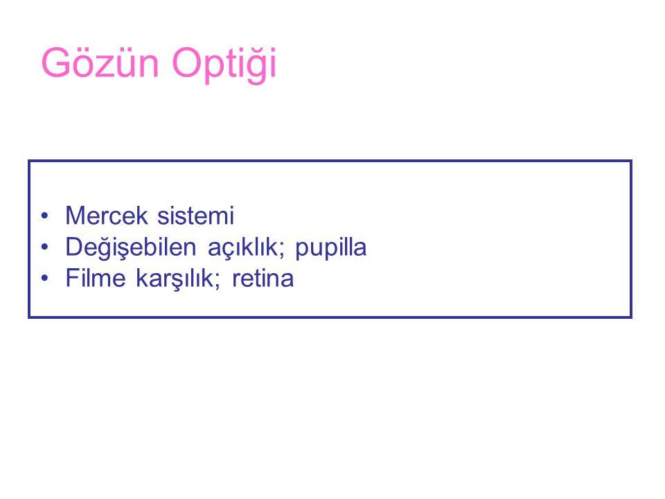 Gözün Optiği •Mercek sistemi •Değişebilen açıklık; pupilla •Filme karşılık; retina