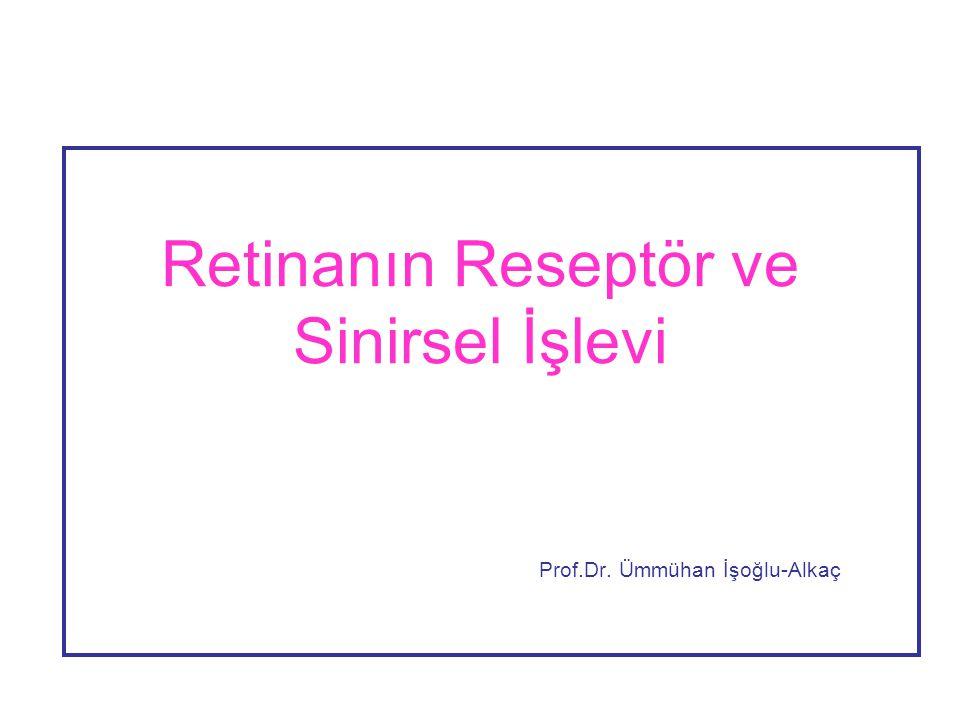 Retinanın Reseptör ve Sinirsel İşlevi Prof.Dr. Ümmühan İşoğlu-Alkaç