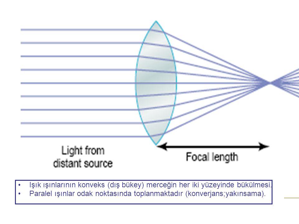 •Işık ışınlarının konveks (dış bükey) merceğin her iki yüzeyinde bükülmesi. •Paralel ışınlar odak noktasında toplanmaktadır (konverjans;yakınsama).