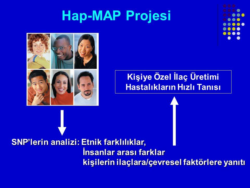 Hap-MAP Projesi SNP'lerin analizi: Etnik farklılıklar, İnsanlar arası farklar İnsanlar arası farklar kişilerin ilaçlara/çevresel faktörlere yanıtı kişilerin ilaçlara/çevresel faktörlere yanıtı Kişiye Özel İlaç Üretimi Hastalıkların Hızlı Tanısı