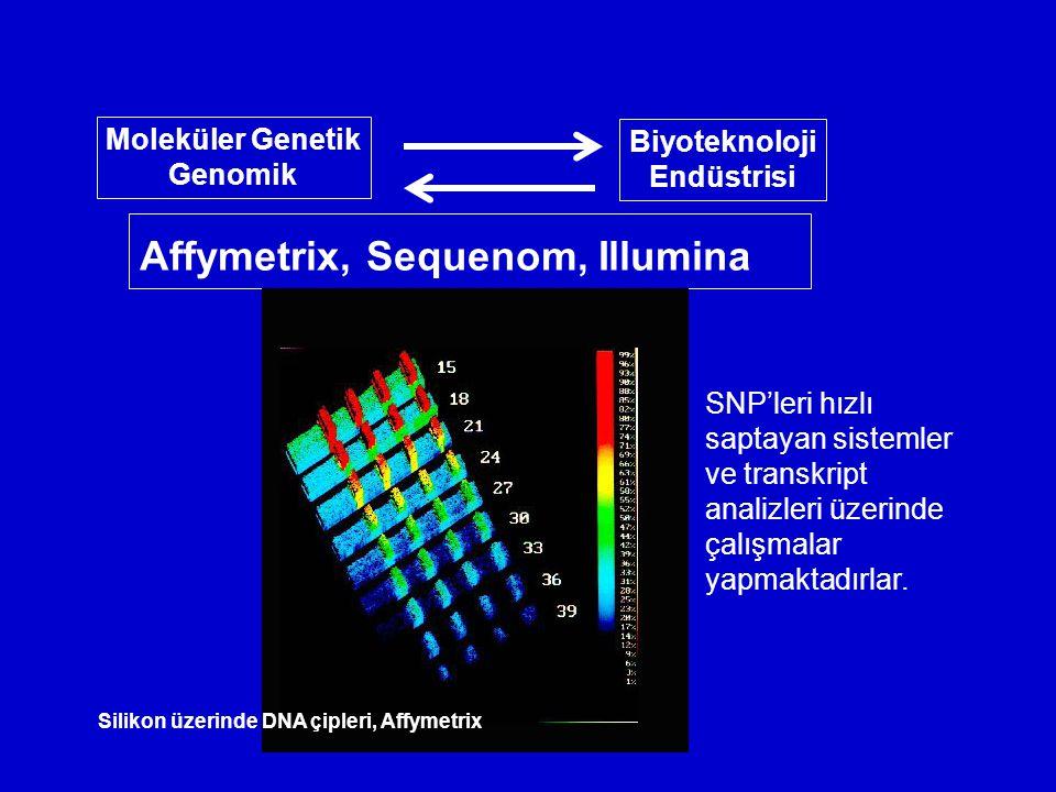 Affymetrix, Sequenom, Illumina Moleküler Genetik Genomik Biyoteknoloji Endüstrisi Silikon üzerinde DNA çipleri, Affymetrix SNP'leri hızlı saptayan sistemler ve transkript analizleri üzerinde çalışmalar yapmaktadırlar.