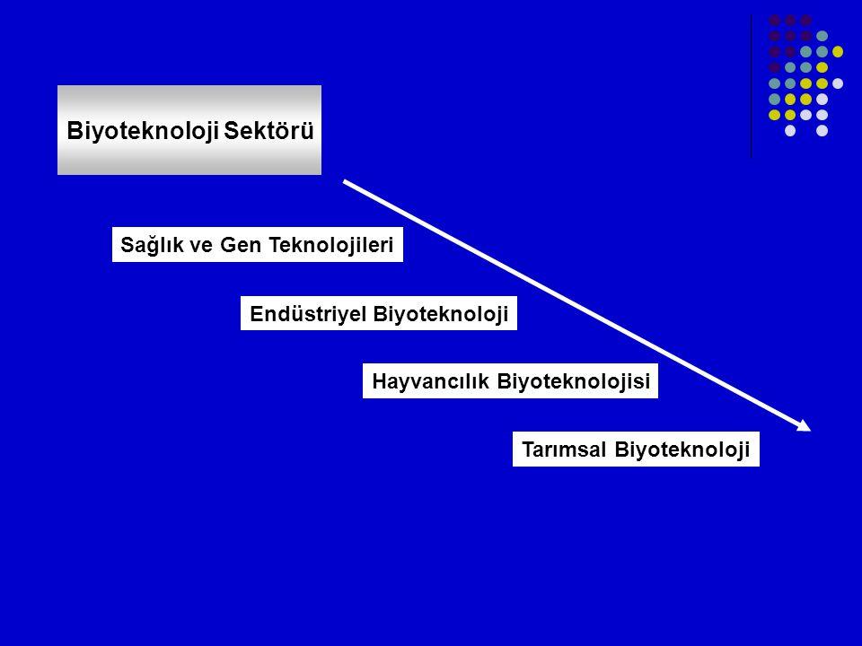 Biyoteknoloji Sektörü Sağlık ve Gen Teknolojileri Tarımsal Biyoteknoloji Hayvancılık Biyoteknolojisi Endüstriyel Biyoteknoloji