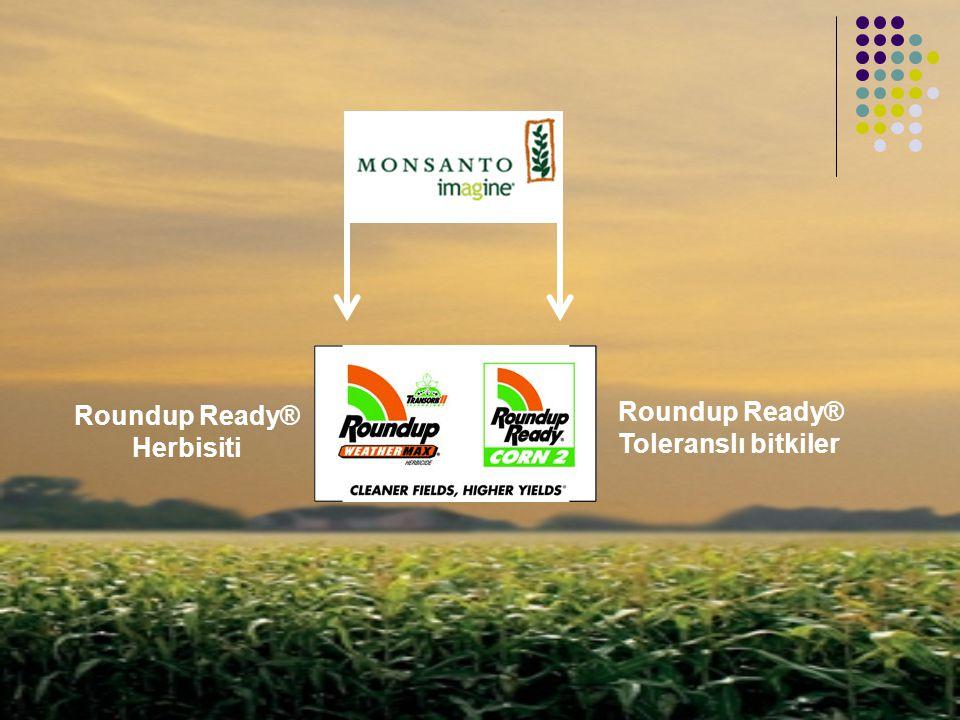Roundup Ready® Toleranslı bitkiler Roundup Ready® Herbisiti