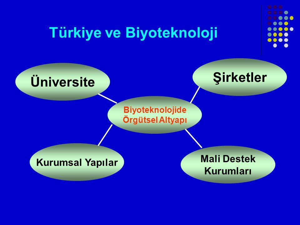 Türkiye ve Biyoteknoloji Üniversite Şirketler Biyoteknolojide Örgütsel Altyapı Mali Destek Kurumları Kurumsal Yapılar