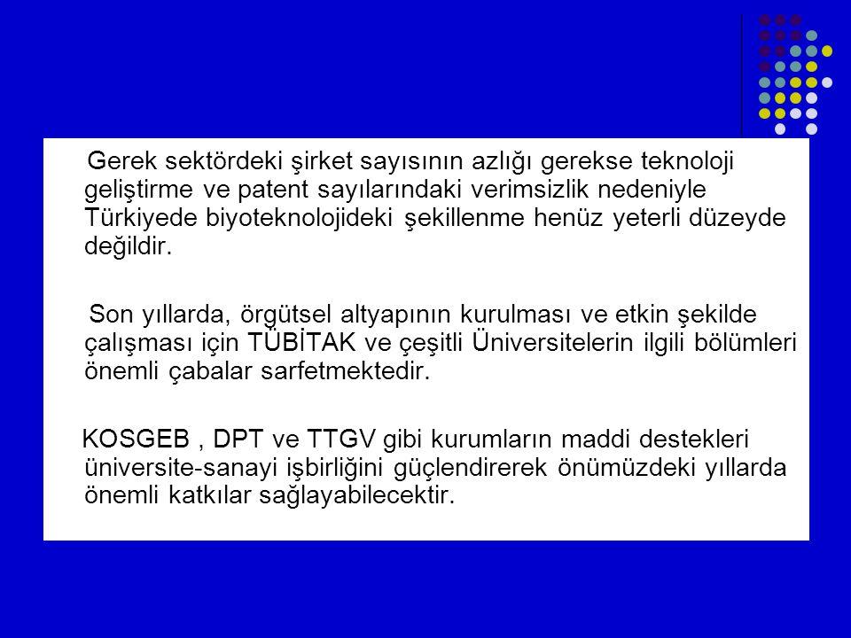 Gerek sektördeki şirket sayısının azlığı gerekse teknoloji geliştirme ve patent sayılarındaki verimsizlik nedeniyle Türkiyede biyoteknolojideki şekillenme henüz yeterli düzeyde değildir.
