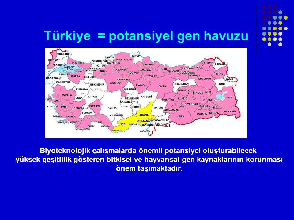 Türkiye = potansiyel gen havuzu Biyoteknolojik çalışmalarda önemli potansiyel oluşturabilecek yüksek çeşitlilik gösteren bitkisel ve hayvansal gen kaynaklarının korunması önem taşımaktadır.
