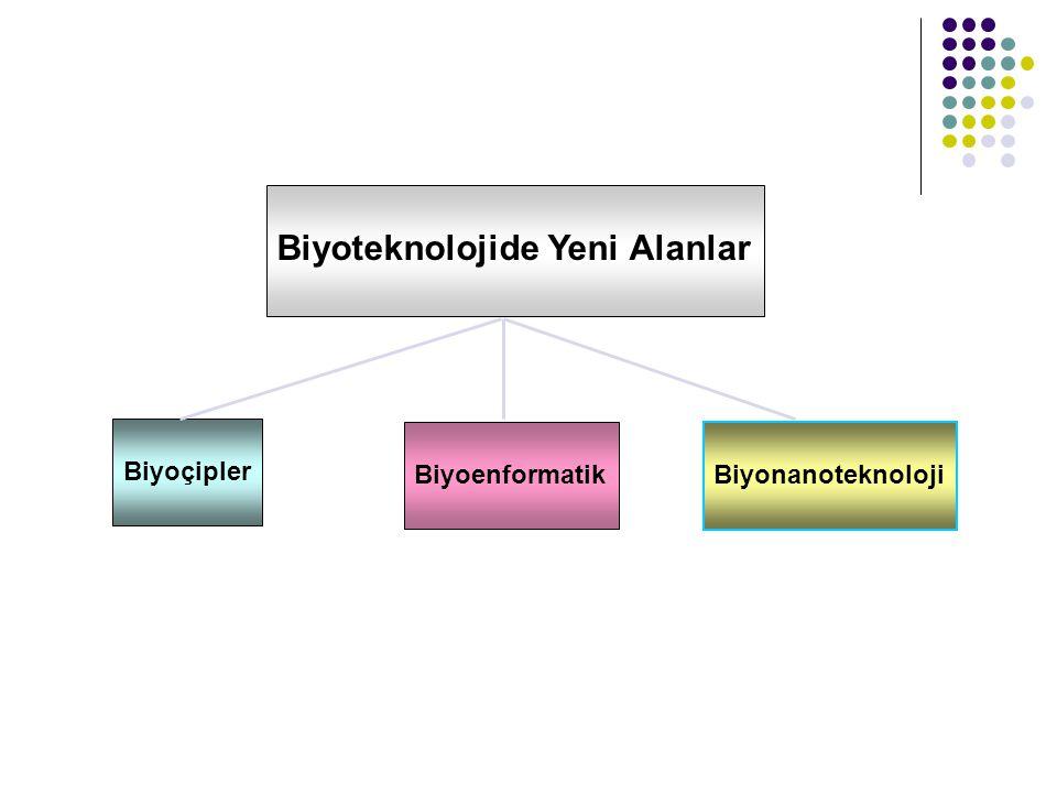 Biyoteknolojide Yeni Alanlar Biyoçipler Biyoenformatik Biyonanoteknoloji