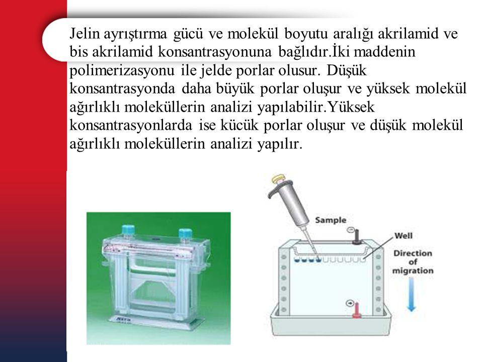 Jelin ayrıştırma gücü ve molekül boyutu aralığı akrilamid ve bis akrilamid konsantrasyonuna bağlıdır.İki maddenin polimerizasyonu ile jelde porlar olu