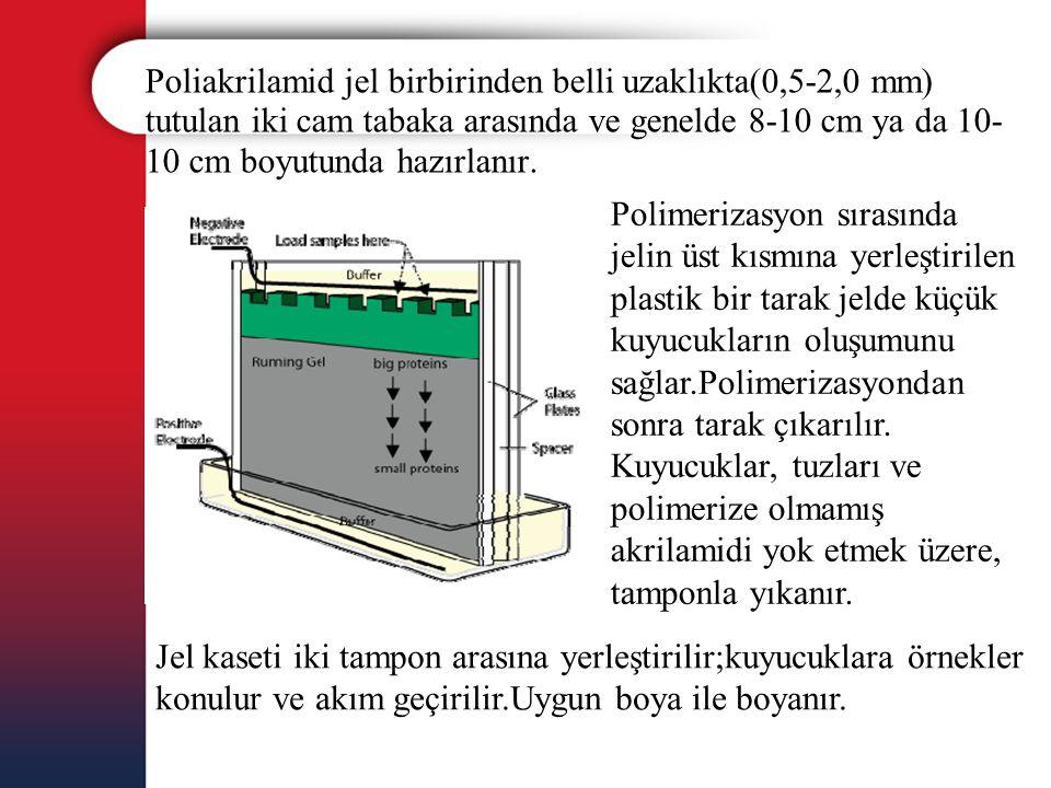 Poliakrilamid jel birbirinden belli uzaklıkta(0,5-2,0 mm) tutulan iki cam tabaka arasında ve genelde 8-10 cm ya da 10- 10 cm boyutunda hazırlanır. Pol