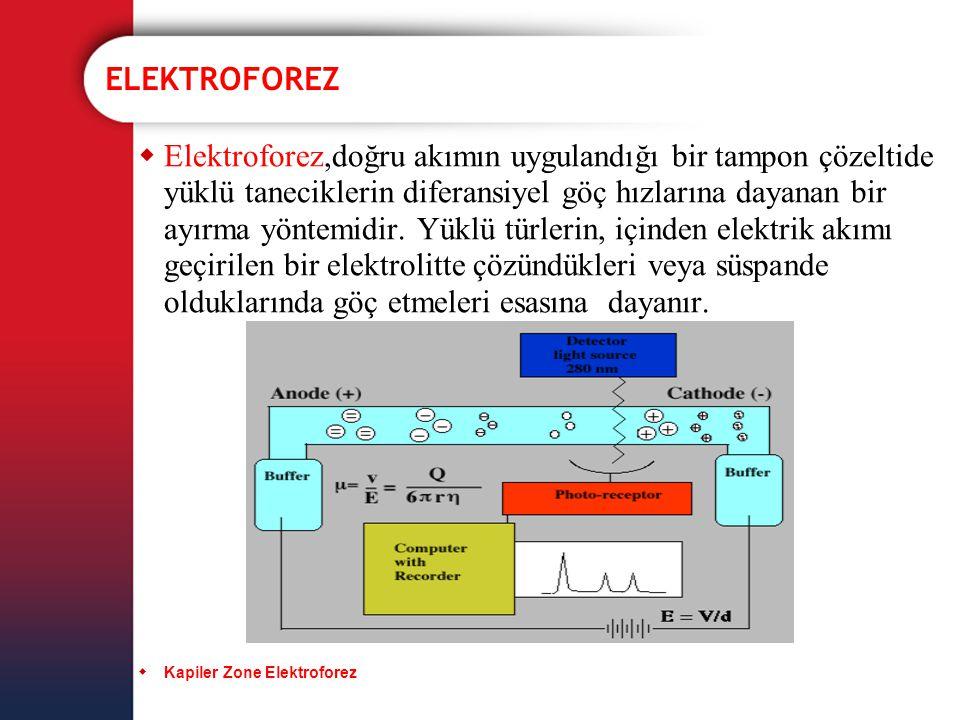  Elektroforez,doğru akımın uygulandığı bir tampon çözeltide yüklü taneciklerin diferansiyel göç hızlarına dayanan bir ayırma yöntemidir. Yüklü türler