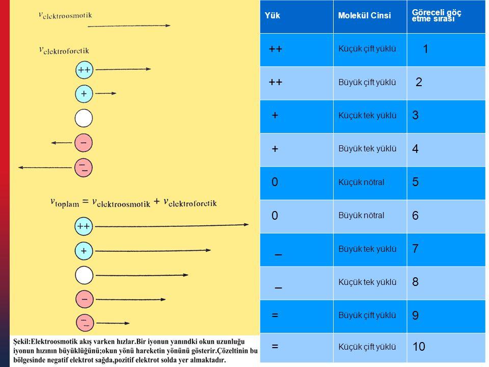 YükMolekül Cinsi Göreceli göç etme sırası ++ Küçük çift yüklü 1 ++ Büyük çift yüklü 2 + Küçük tek yüklü 3 + Büyük tek yüklü 4 0 Küçük nötral 5 0 Büyük