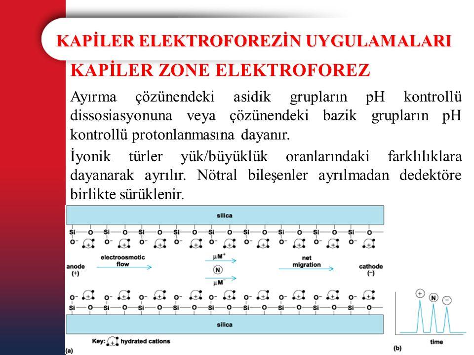 KAPİLER ELEKTROFOREZİN UYGULAMALARI KAPİLER ZONE ELEKTROFOREZ Ayırma çözünendeki asidik grupların pH kontrollü dissosiasyonuna veya çözünendeki bazik