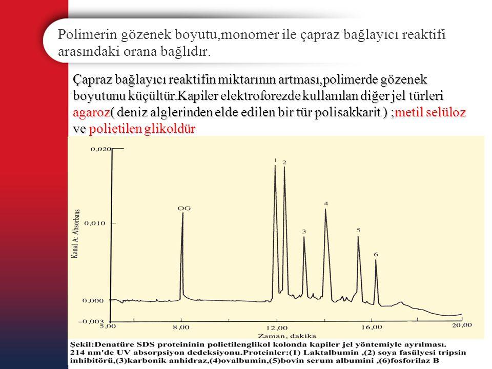 Polimerin gözenek boyutu,monomer ile çapraz bağlayıcı reaktifi arasındaki orana bağlıdır. Çapraz bağlayıcı reaktifin miktarının artması,polimerde göze