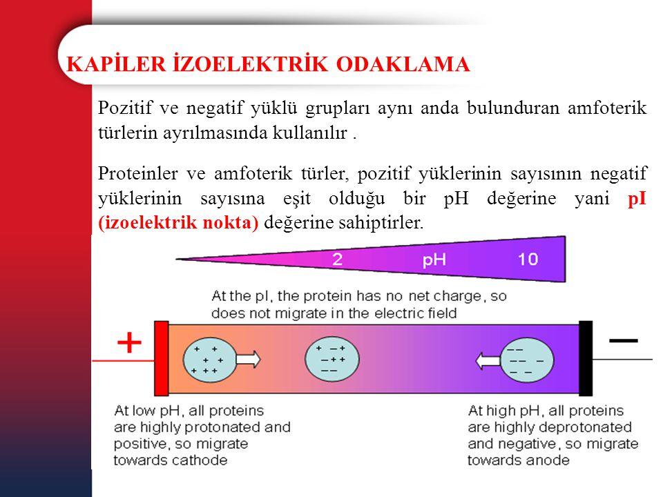 KAPİLER İZOELEKTRİK ODAKLAMA Pozitif ve negatif yüklü grupları aynı anda bulunduran amfoterik türlerin ayrılmasında kullanılır. Proteinler ve amfoteri