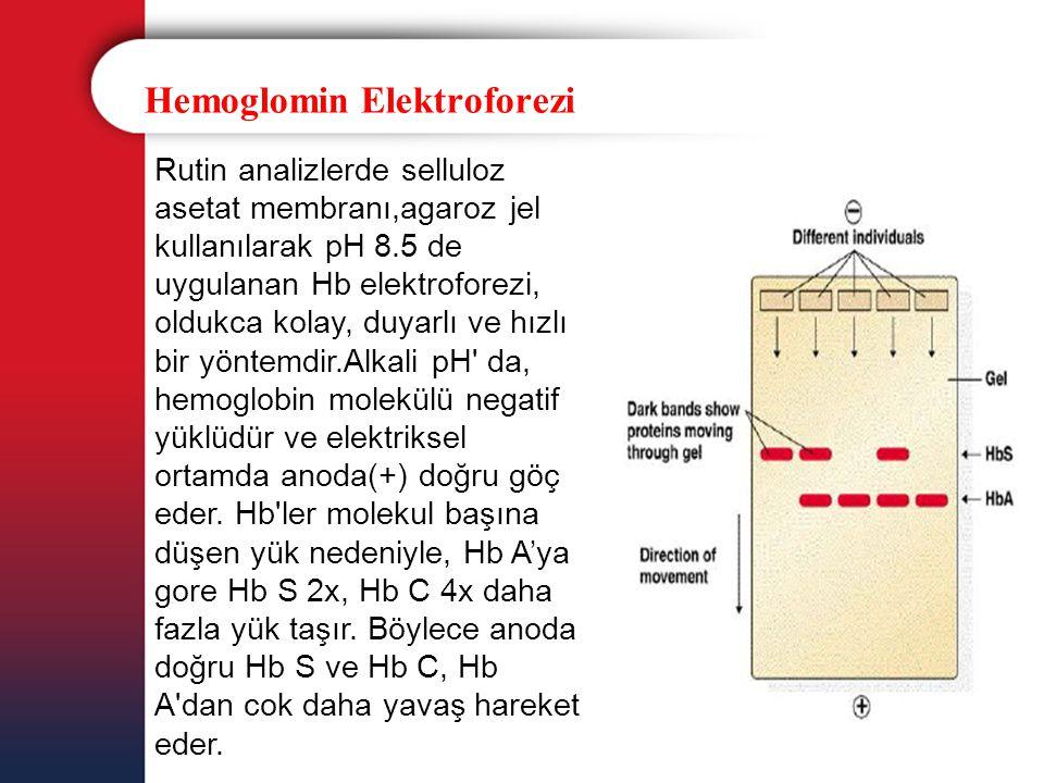 Hemoglomin Elektroforezi Rutin analizlerde selluloz asetat membranı,agaroz jel kullanılarak pH 8.5 de uygulanan Hb elektroforezi, oldukca kolay, duyar
