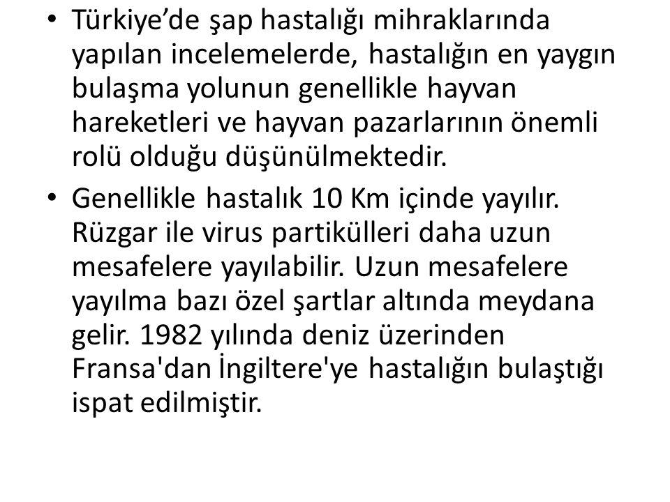• Türkiye'de şap hastalığı mihraklarında yapılan incelemelerde, hastalığın en yaygın bulaşma yolunun genellikle hayvan hareketleri ve hayvan pazarları